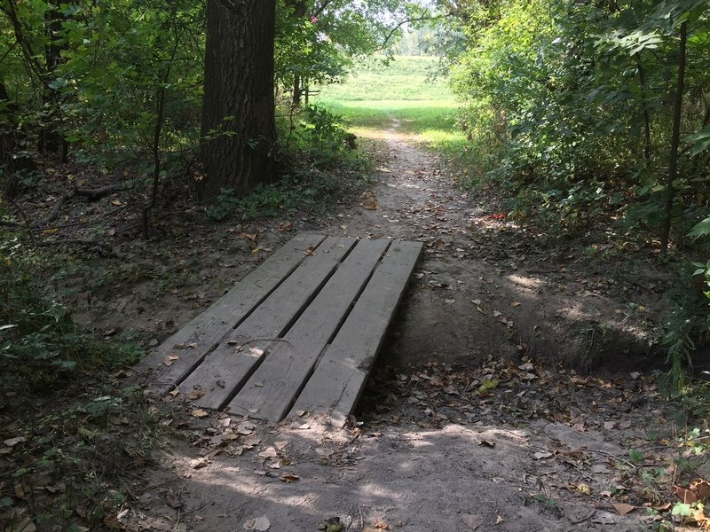 A creek crossing on the north south bisector trail.