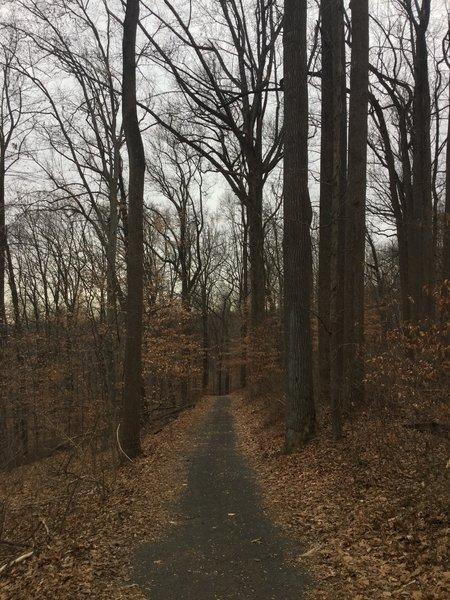 Mail Trail (White)