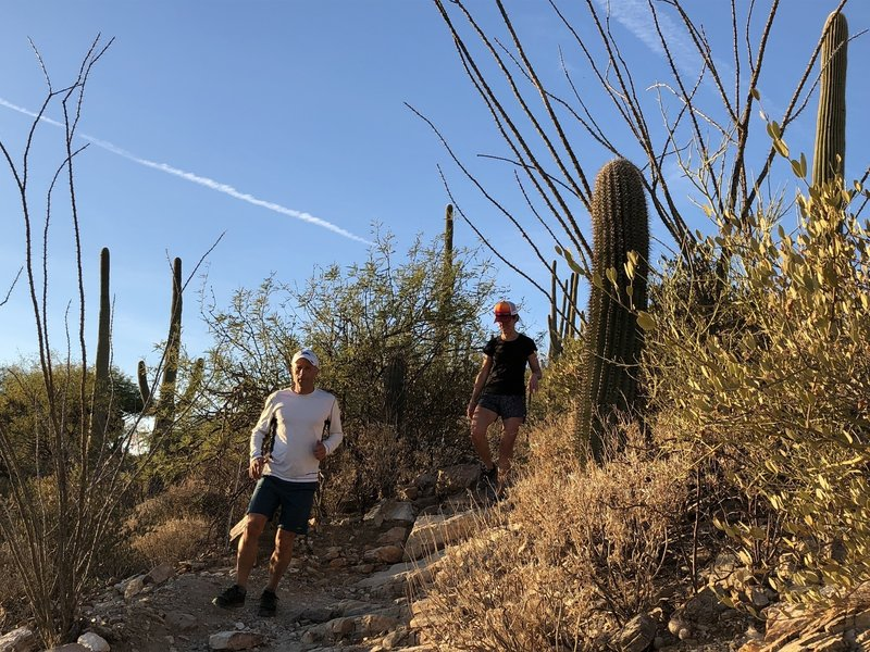 Starting out the Pontatoc Trail