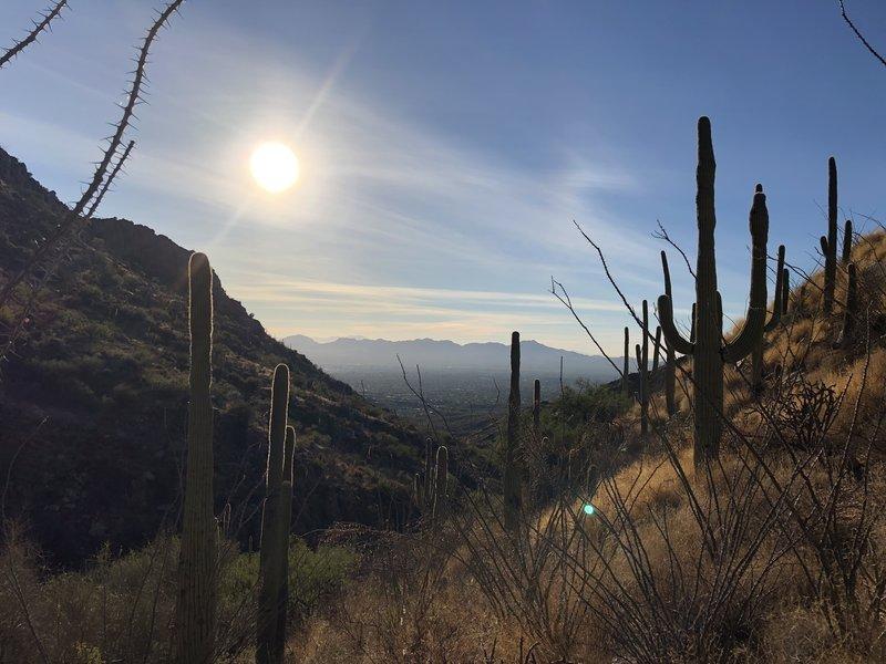 Sunset over Tucson