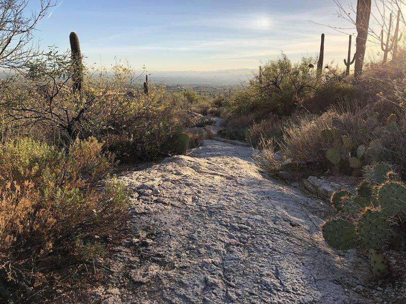 Nice sunset over Tucson