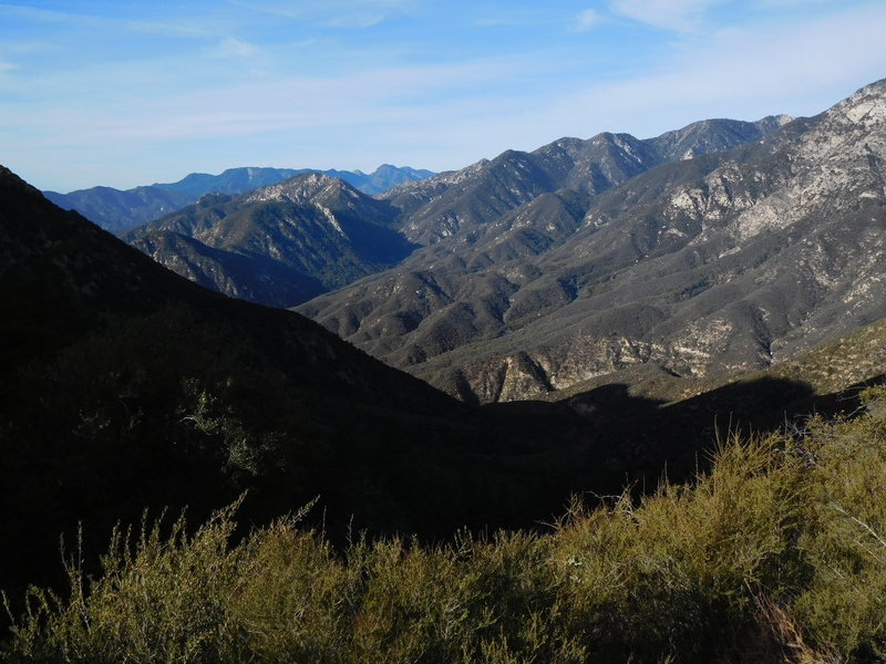 View from Smith Mountain Saddle looking southwest towards Mt. Wilson.