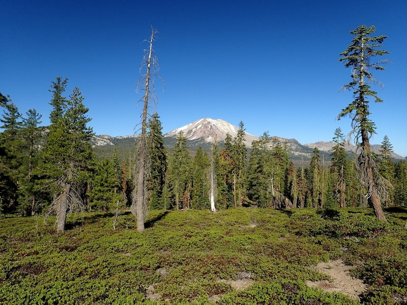 Mount Lassen from the trail junction