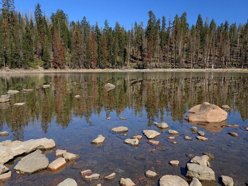 Little Bear Lake in a low water year