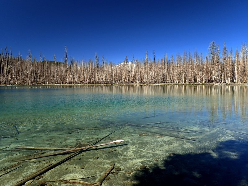 Silver Lake with Mount Lassen behind fire-ravaged forest