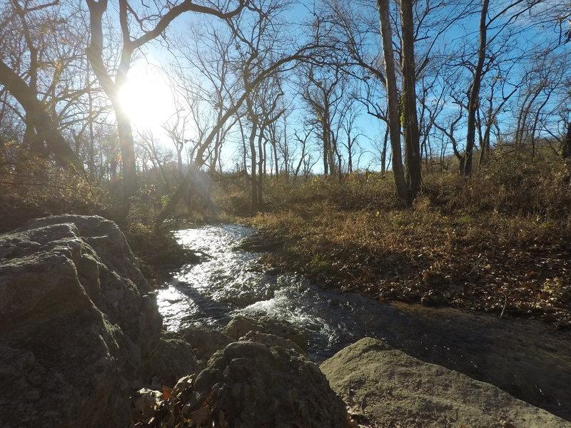 Photo of creek along nature trail.