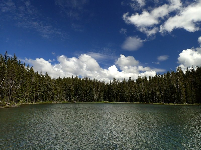 Waldo Lake at Shadow Bay