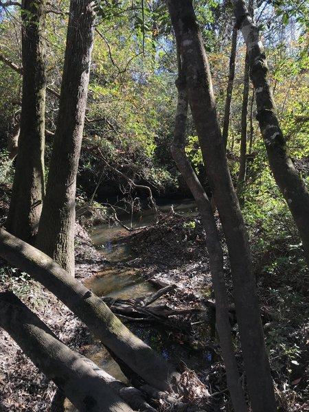 Small creek meeting the Tuxachanie