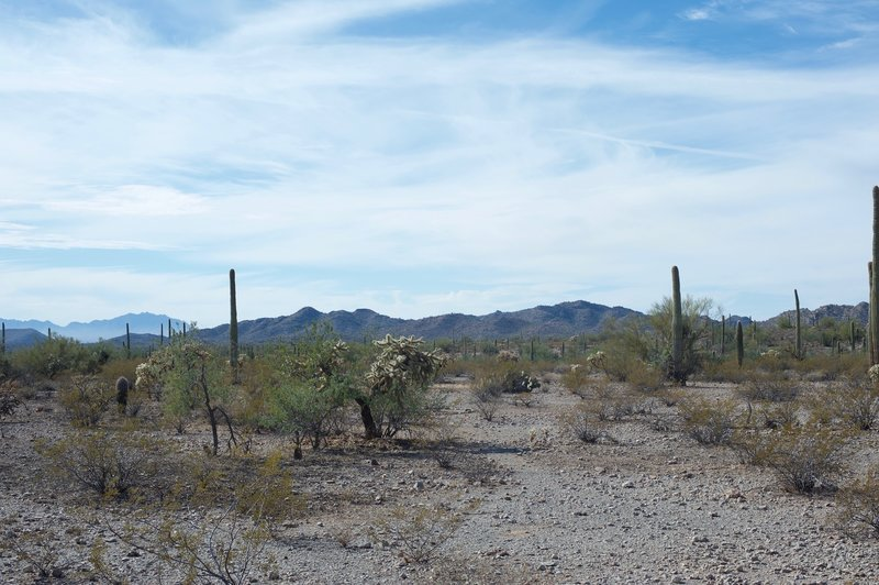 Looking out into the desert, you can see the mountains to the South.