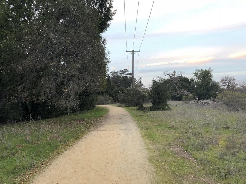 The trail as it leaves the road.  The creek is on the left hand side and the field/meadow starts to open up on the right.