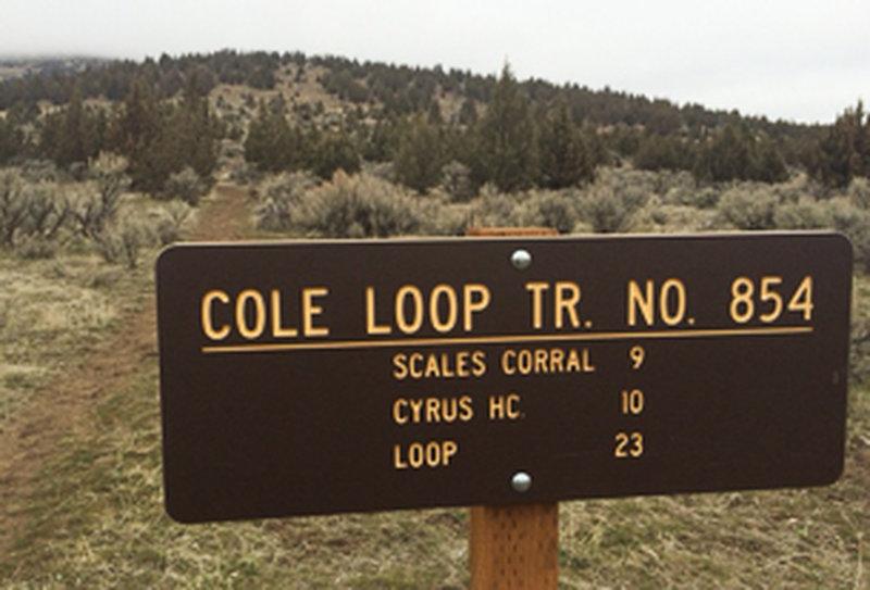 Cole Loop Trail No. 854