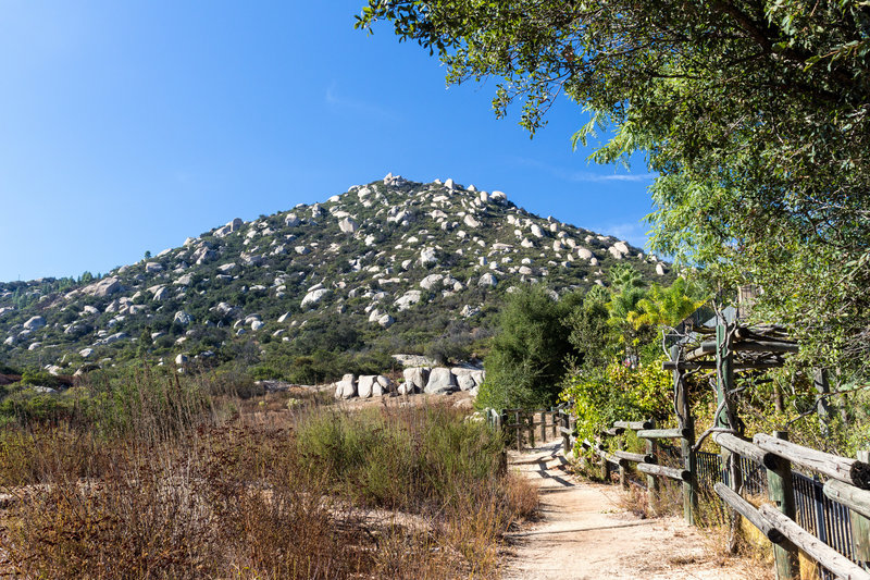 Mount Woodson from the Fry Koegel Trail as you move along the residential area on the right