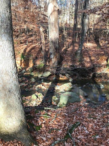 Rock hopping creek crossing