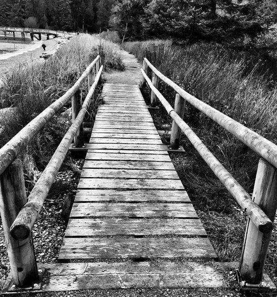 Foot bridge, Bowman Bay.