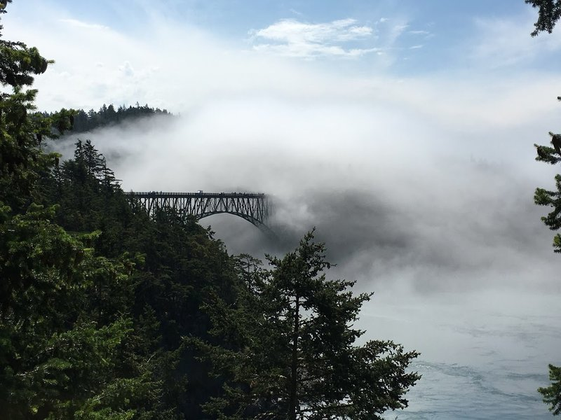Fog rolling over Deception Pass Bridge.