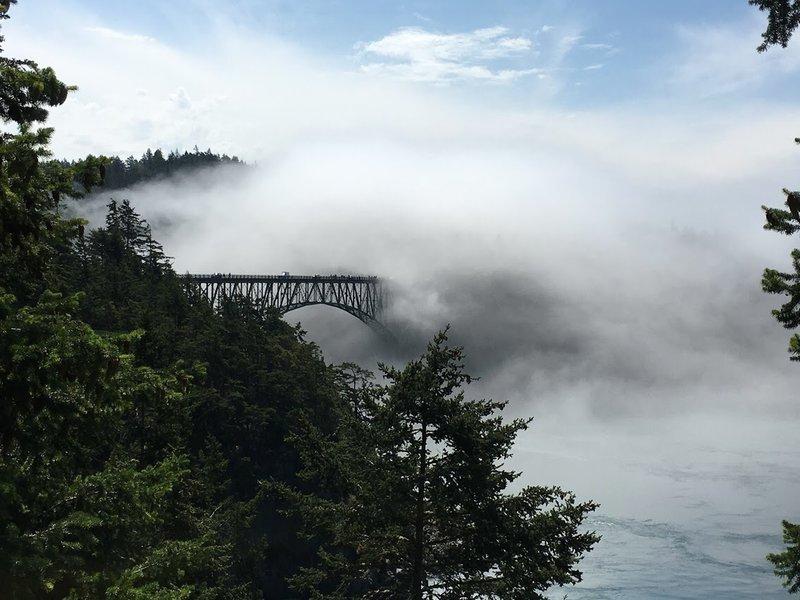 Fog rolling over Deception Pass Bridge.