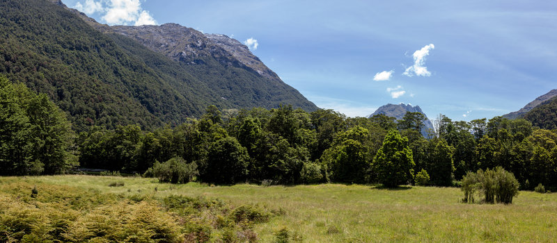 View from Glade House across the meadow up the Clinton Valley