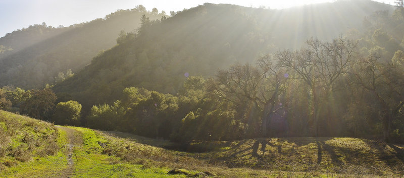 The winter sun shines over Pine Ridge from Burma Road in Mount Diablo State Park