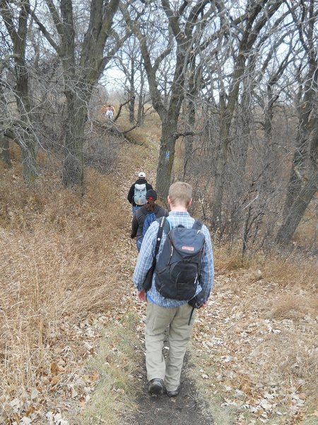 Hiking through the oak savanna