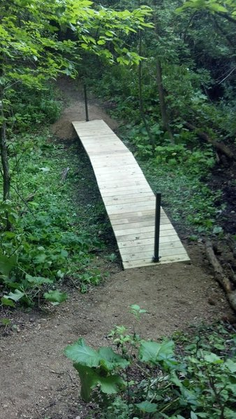 One of the boardwalks that hikers use to cross the streams / wet spots