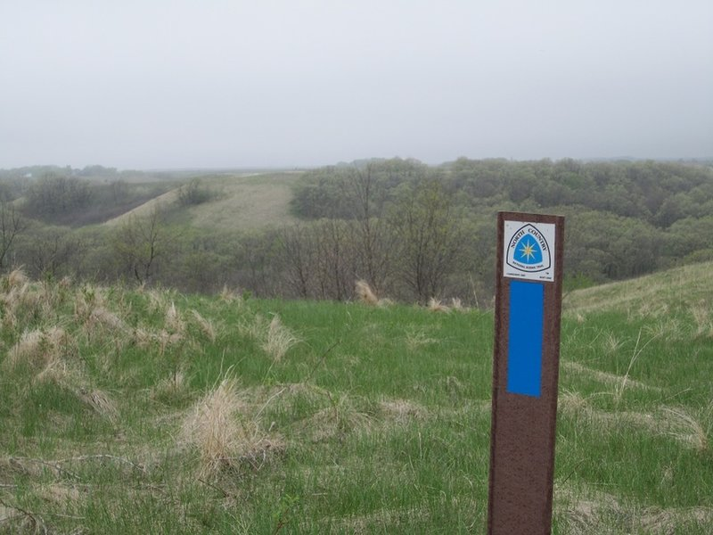 Views across a foggy ravine in the Spring