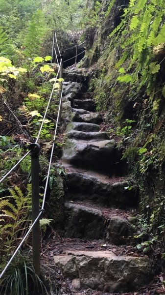 Steep rocky stair steps above beside a waterfall