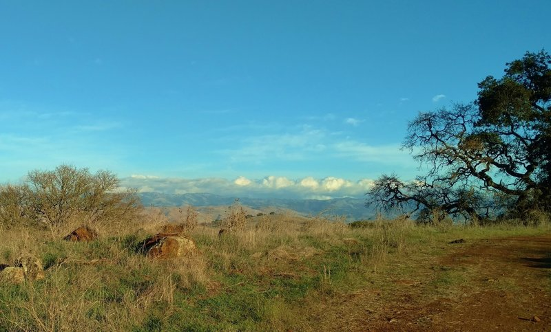 The Diablo Range is in the distance to the northeast, as seen from a rocky grass ridge of Los Cerritos Trail.