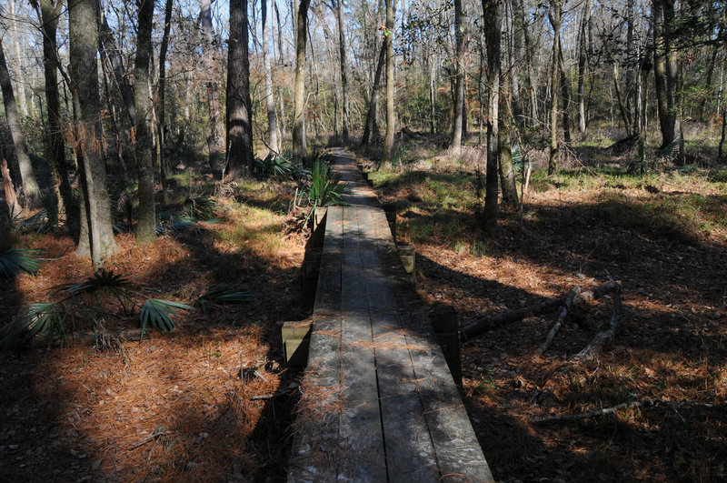 Boardwalks help with crossing Little Lake Creek (which was mostly dry in January)