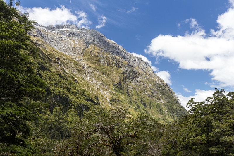 Castle Mount towering Marlenes Creek