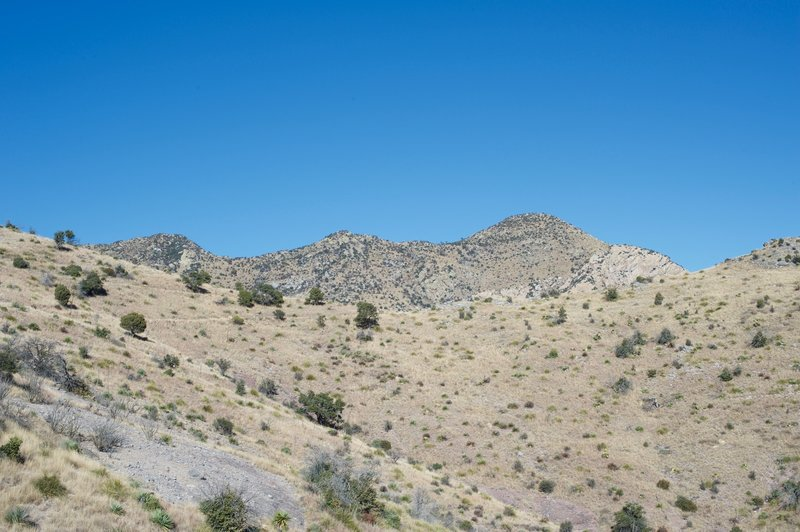 The trail climbs gently along the hillside to a gap in the ridge where the trail meets up with the Joe's Canyon Trail.