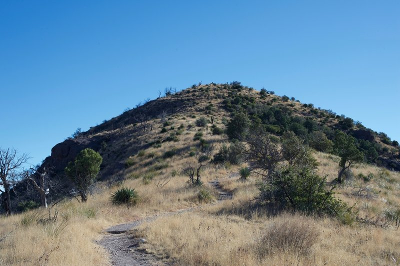 The Coronado Peak Trail climbs the hill using switchbacks and stairs.