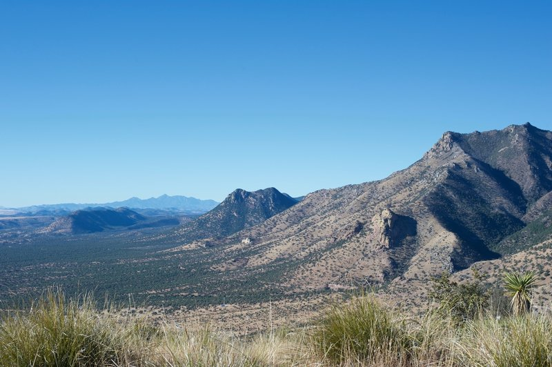Looking back at the mountains in the Coronado National Monument. You can see how green the desert is here.