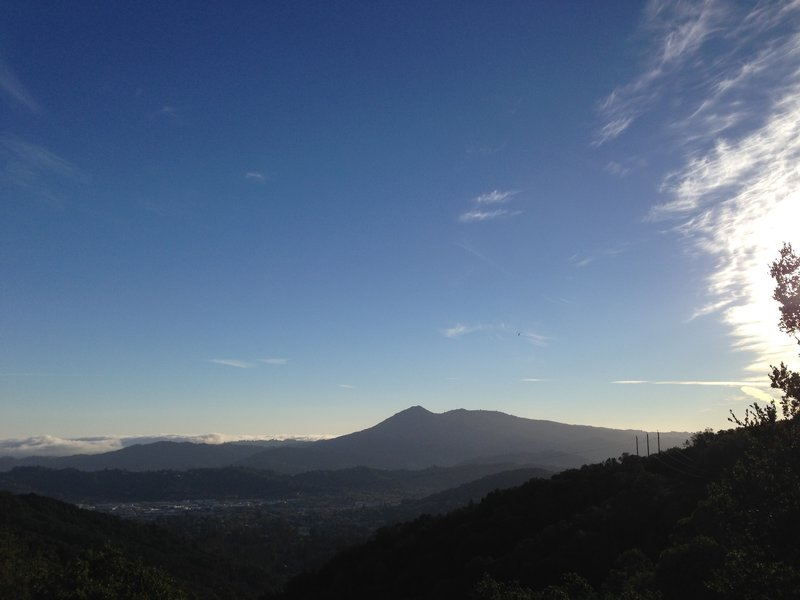 Mount Tamalpais from the Oak Ridge Trail