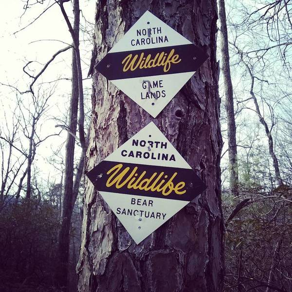 Saw these signs frequently as the trail borders gamelands