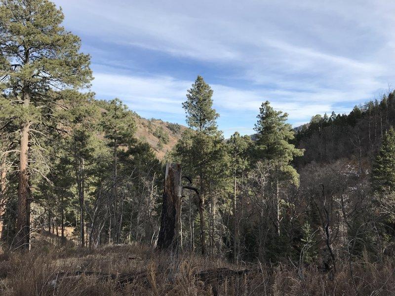 View back down Little Bonito Canyon