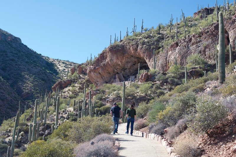 Hiking up to the Lower Cliff Dwelling. The fact that the trail is paved make it popular.