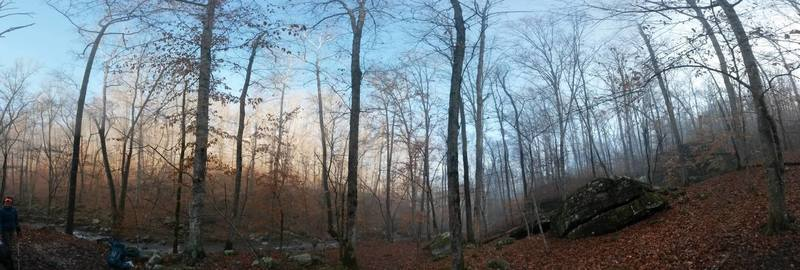 Dawn in the Hurricane Creek Wilderness