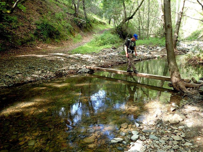 Your fiirst (or last) crossing of Moore Creek