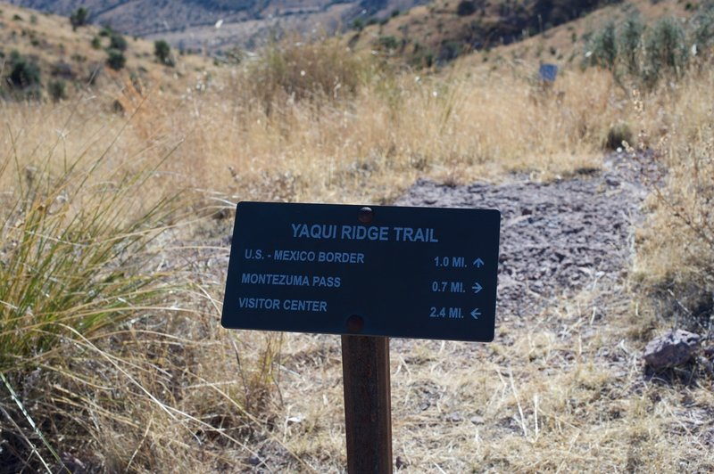 The trail intersects with the Yaqui Ridge Trail at roughly .7 miles. From here, you have another 2.4 miles of descent until you reach the road down in the valley close to the visitor center.