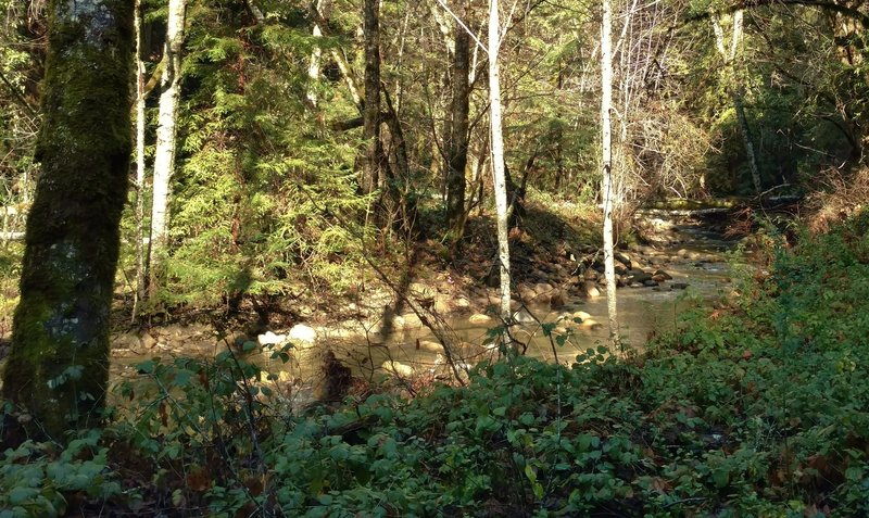 East Branch of Soquel Creek along Hihn's Mill Road
