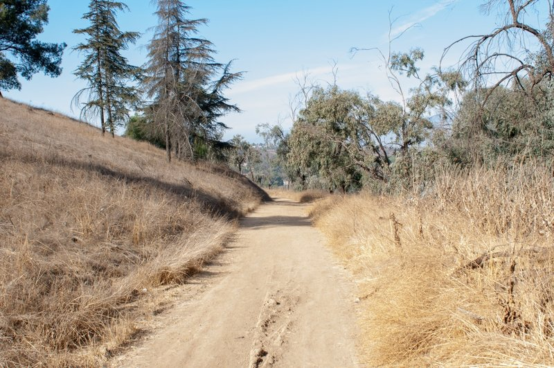 Nice wide trail, good for group hikes. Keep an eye out for mountain bikers