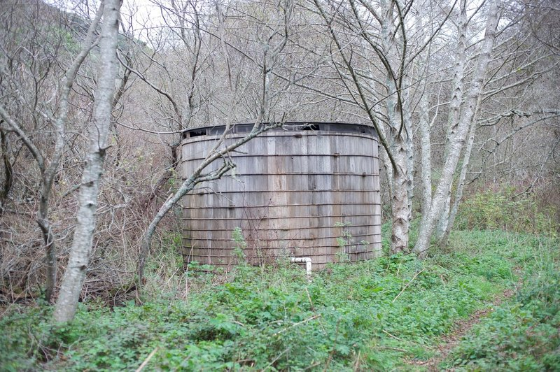 At the end of the trail, you encounter two wooden water tanks above Mills Creek that service the park residence downstream.