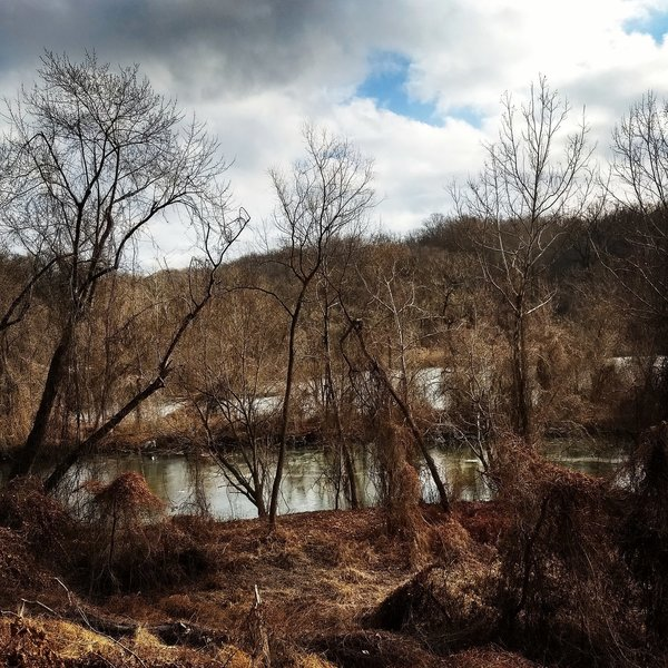 Beautiful view of Roland Run from the yellow trail