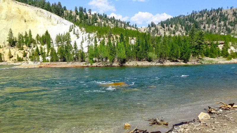 The Yellowstone River, next to Tower Fall Trail