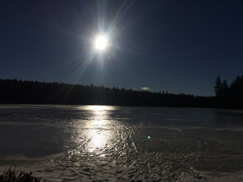 Evening sun over James Pond.