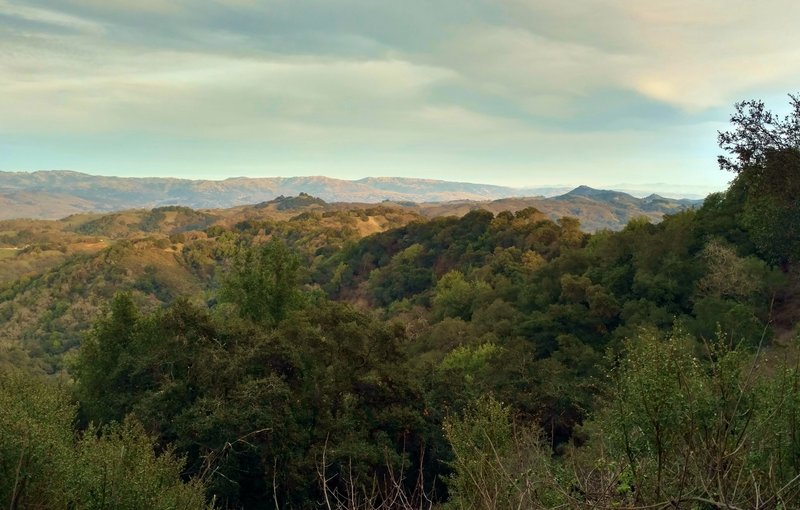 Ridges and hills south of San Jose, seen from the Canada del Oro Cut-Off Trail on a late afternoon