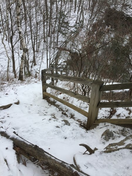 1 technical section on the Escarpment Trail that can be easily avoided.