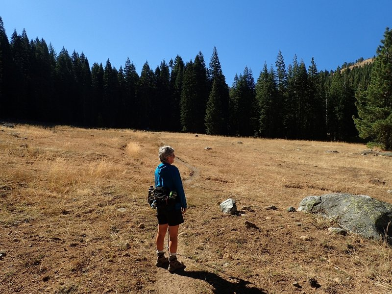 One of the meadows along the East Boulder Lake Trail