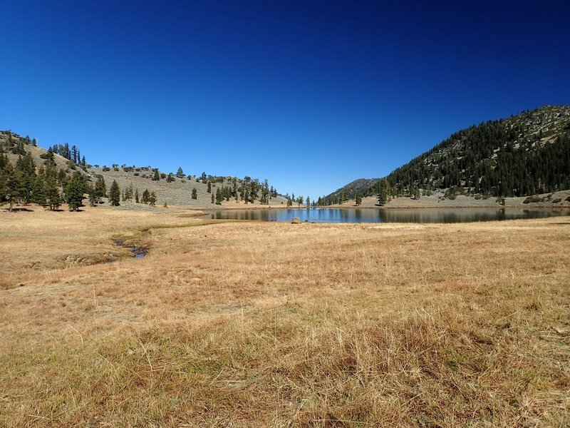 Meadows on the south end of East Boulder Lake
