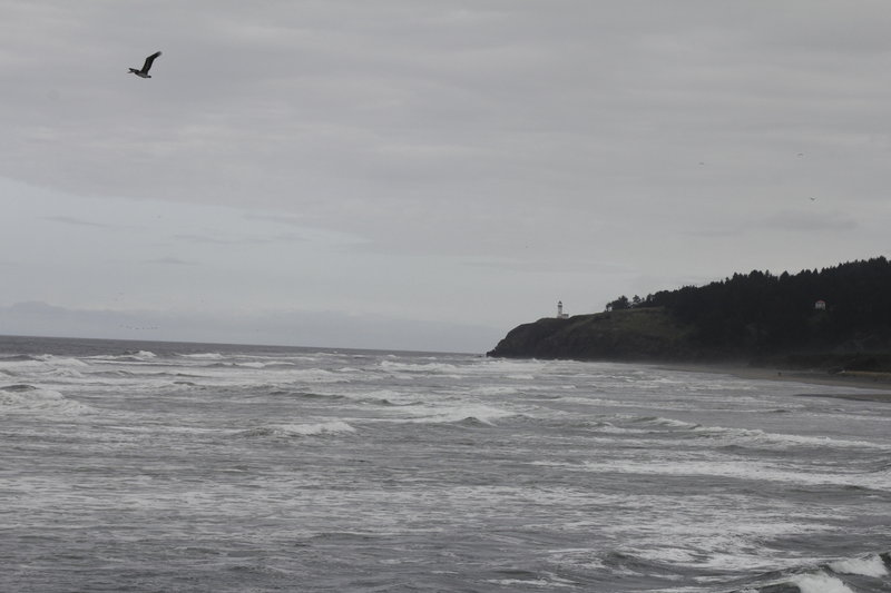 Looking North towards the North Head Lighthouse.